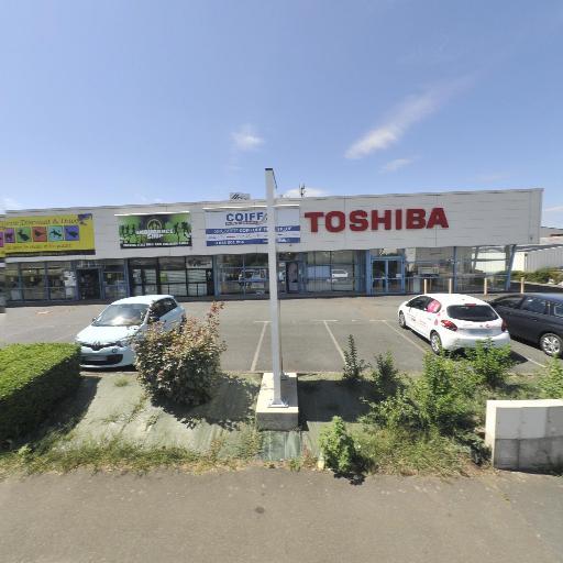 Toshiba - Matériel pour photocopieurs et reprographie - Le Mans